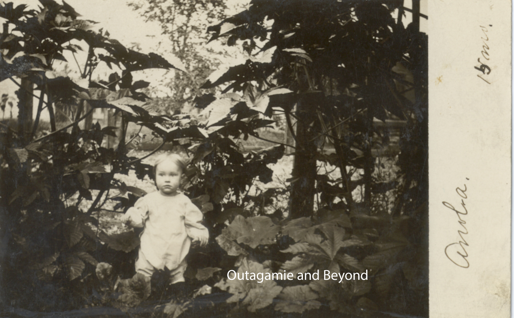 The Secret Garden | Outagamie and Beyond